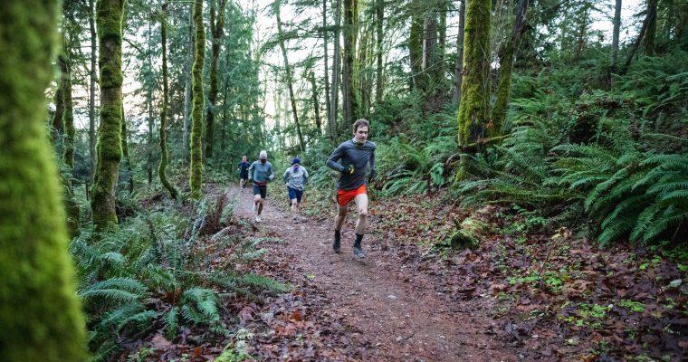 Best of Squak Mountain Half Marathon